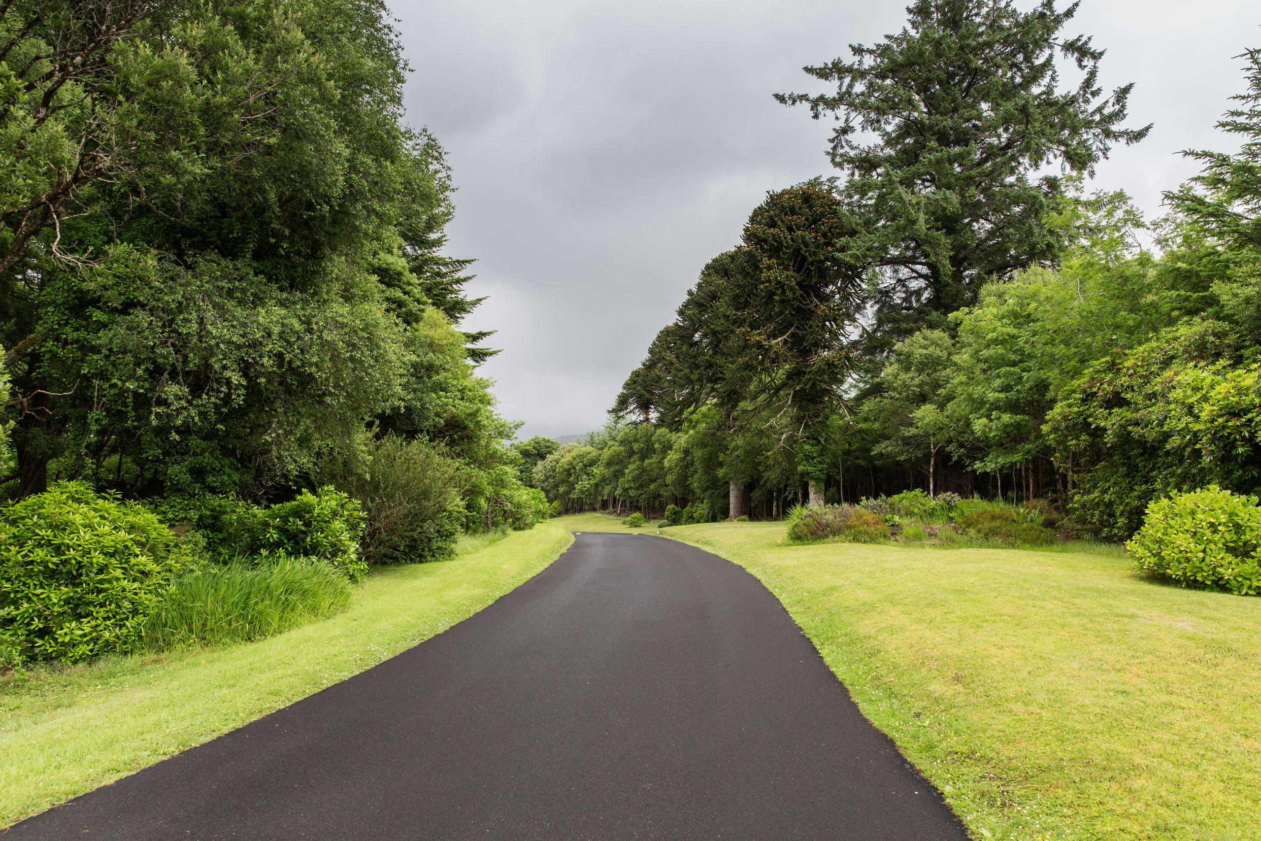asphalt paving lakemoor